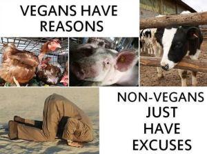 GO #vegan digoutyoursoul