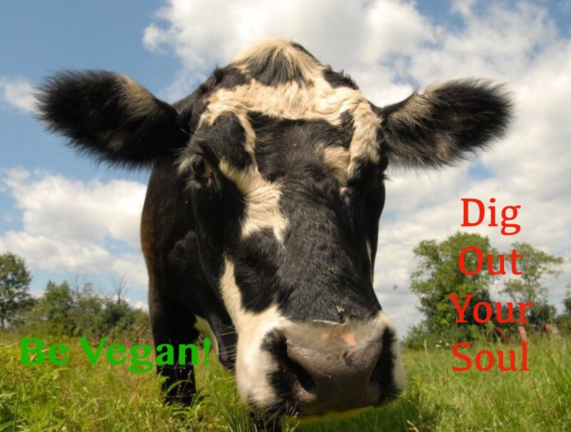 Pretty cow vegan dig out your Soul